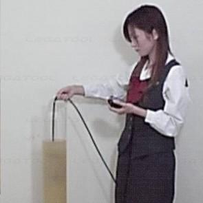 Iijima IM-100P MLSS Checker Meter (Standard: 6M)