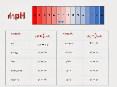 PH01E - เครื่องวัด pH ดิน