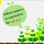 ค่า pH ในดินคืออะไร มีผลกับพืชยังไง
